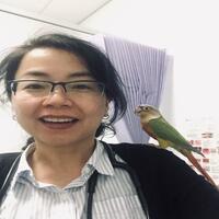 Dr Aixia Wu